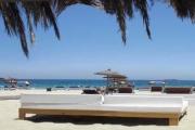 Sands - Ibiza